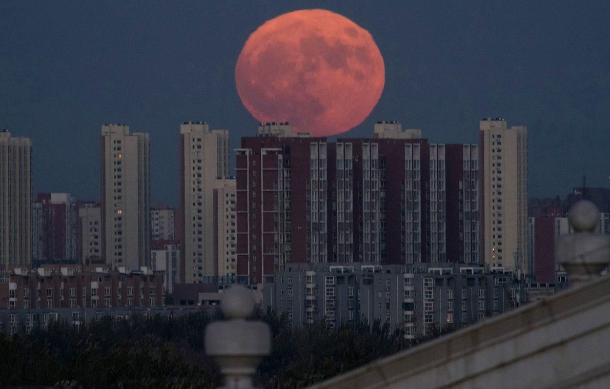 Ein Supermond geht im November 2016 hinter Wohnhäusern in Peking auf.