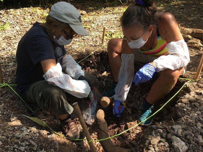 Archäologin Dawn Johnson und Ärztin Kim Zimmerman
