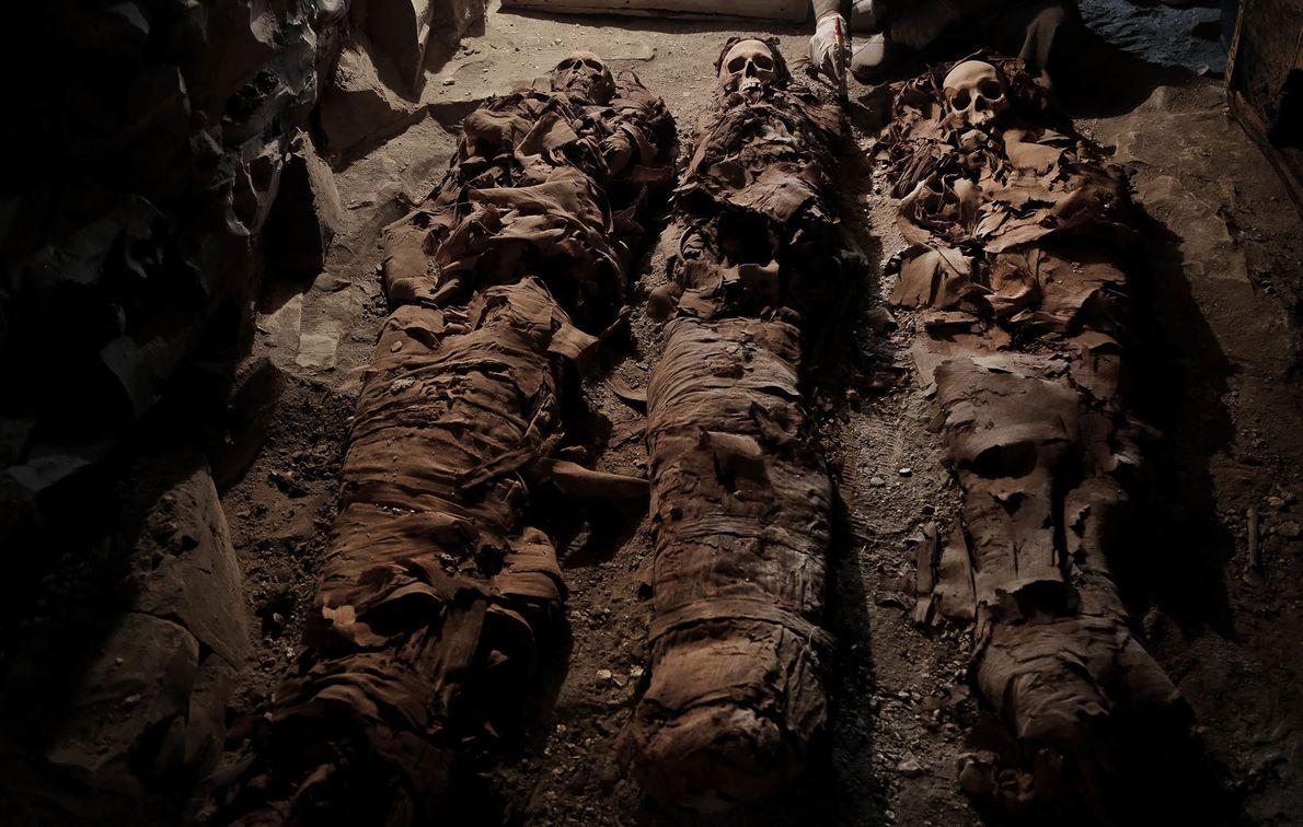 Drei Mumien liegen in dem Grab, das kürzlich in der Nähe von Luxor entdeckt wurde.