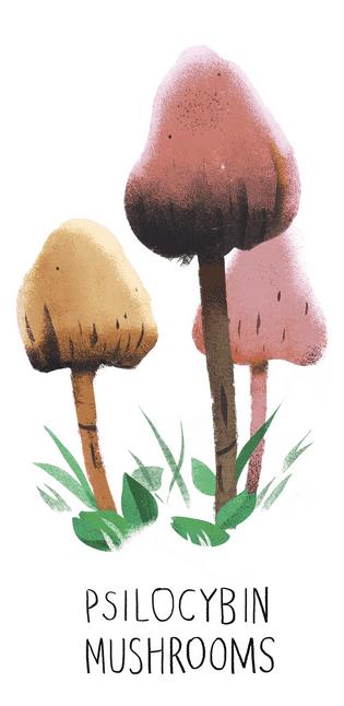 Illustration eines psilocybinhaltigen Pilzes