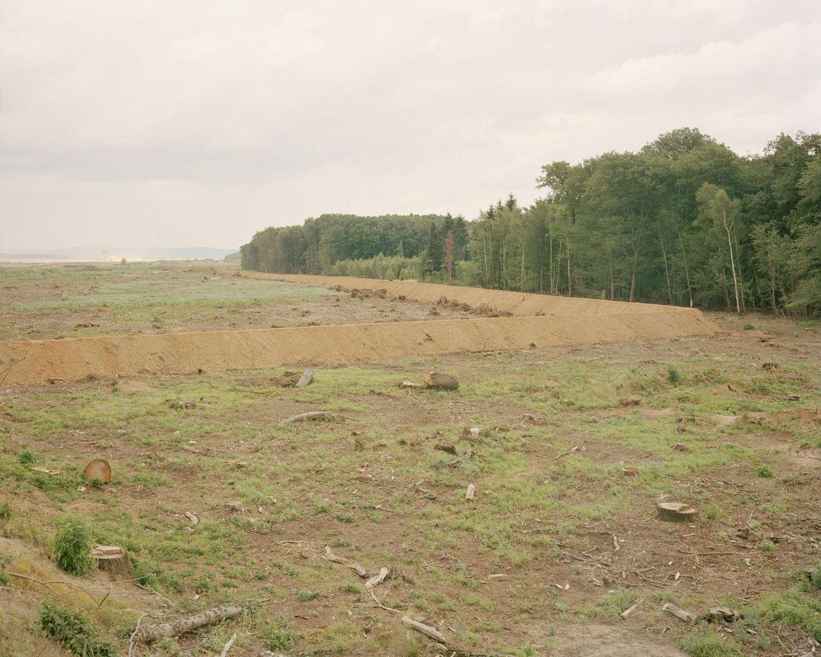Ein Erdwall trennt den Rest des Waldes von jenem Gebiet, das bereits gerodet wurde. Nicht mal ...