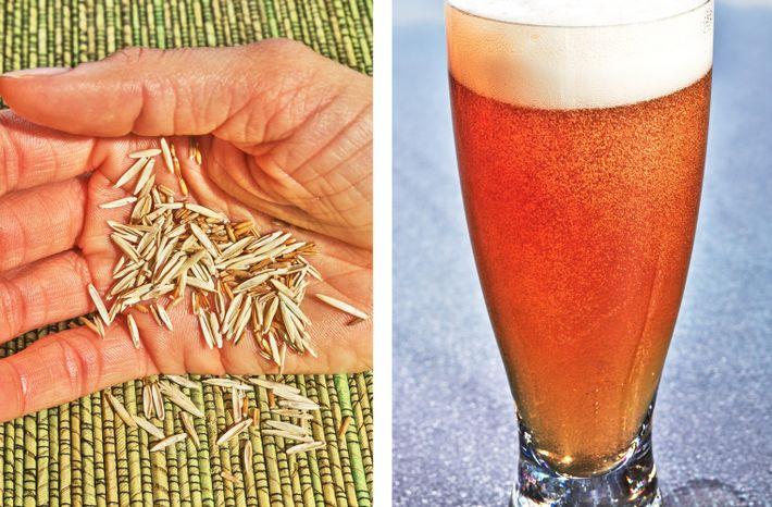 Getreide und Bier