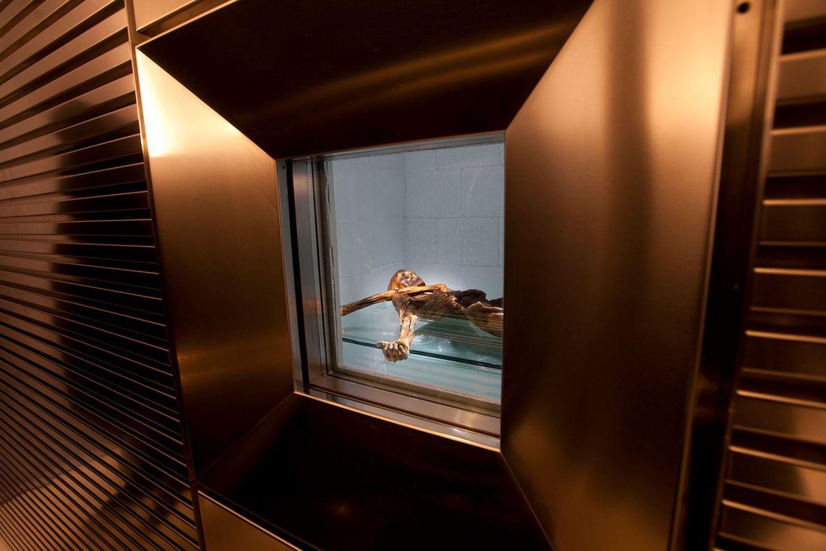 Ötzi im Südtiroler Archäologiemuseum