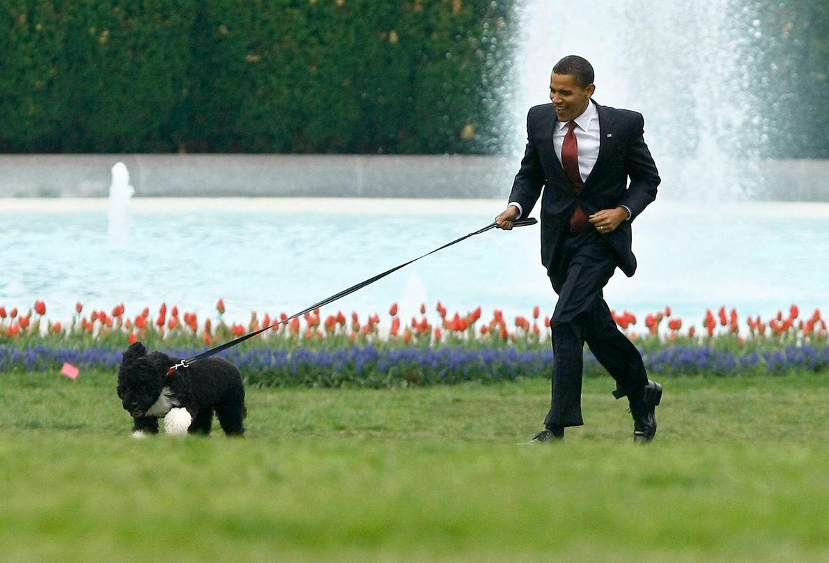 Obama & Bo