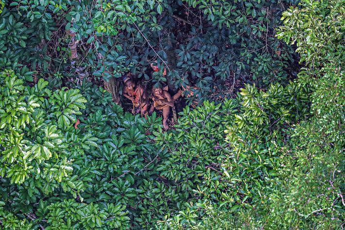 Foto eines Stammesmitglieds im Amazonas, der sich unter einem Baum versteckt