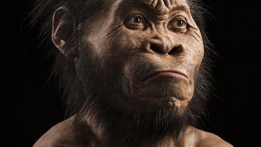 Lebte dieser mysteriöse Affenmensch an unserer Seite?