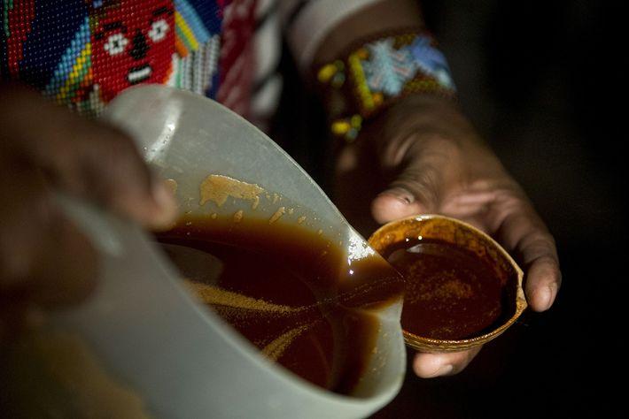 In Kolumbien bietet ein Heiler während einer rituellen Heilungszeremonie in Kolumbien Ayahuasca an. In der bolivianischen ...