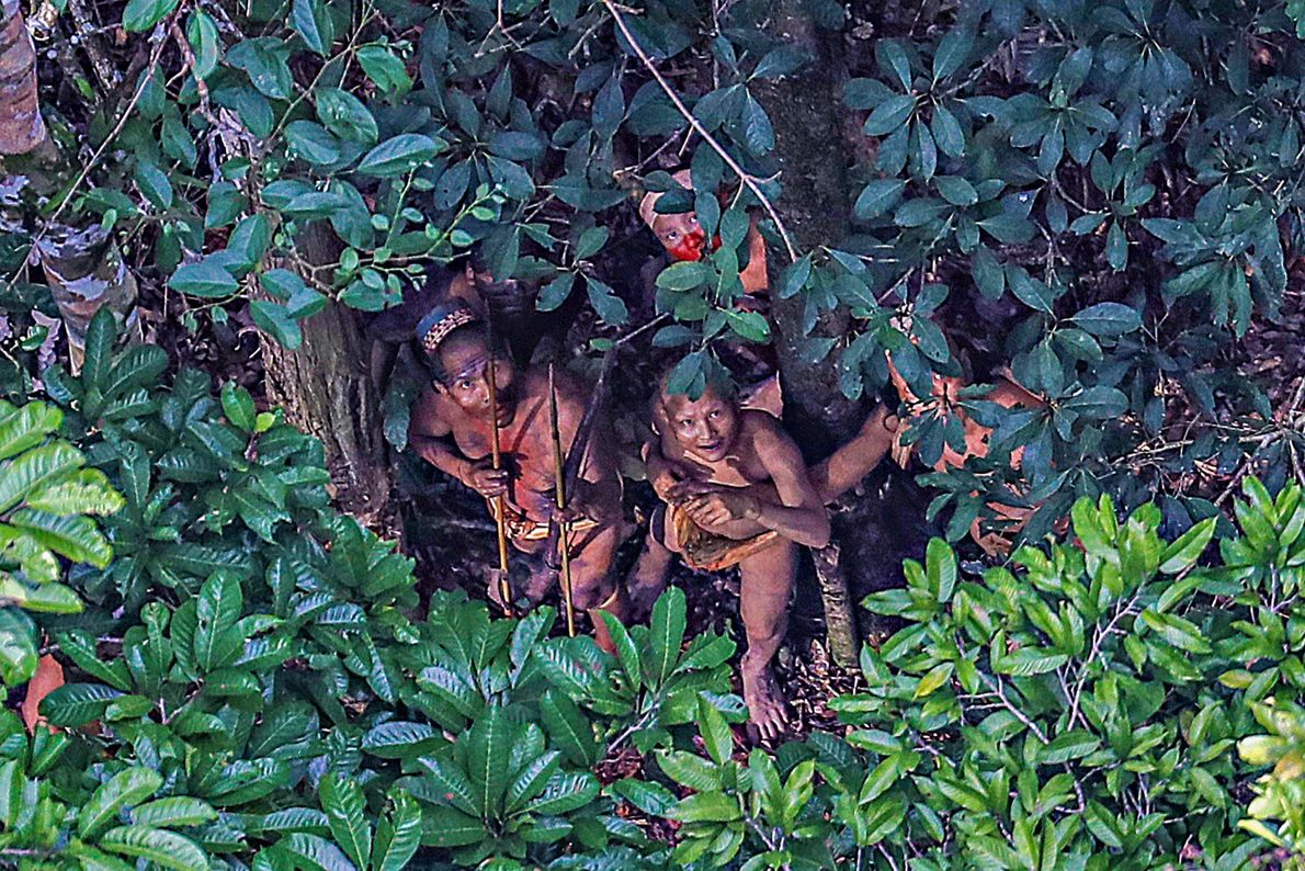 Foto eines Stammes, der sich unter einem Baum im Amazonas versteckt.