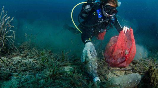 Erfahrt mehr über die Plastikverschmutzung