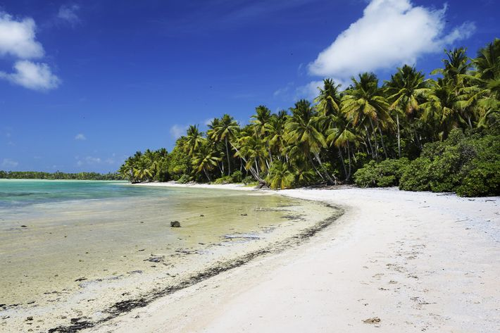 Insel Nikumaroro