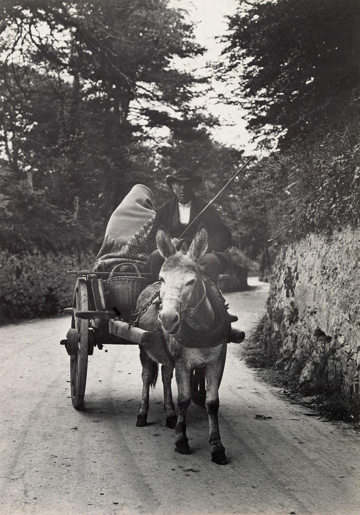 Ein Ehepaar fährt mit einem Maultierkarren auf einer Landstraße in Galway, Irland.