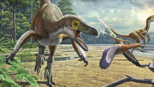 Wissen kompakt: Dinosaurier