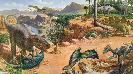 Galerie: Neuer vogelartiger Dinosaurier hatte moderne Federn