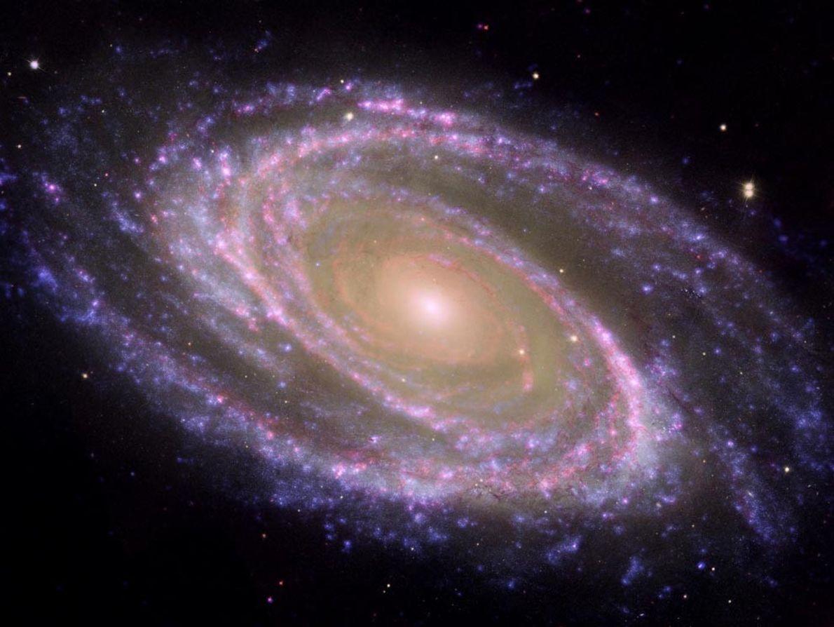 Galaxie Messier 81