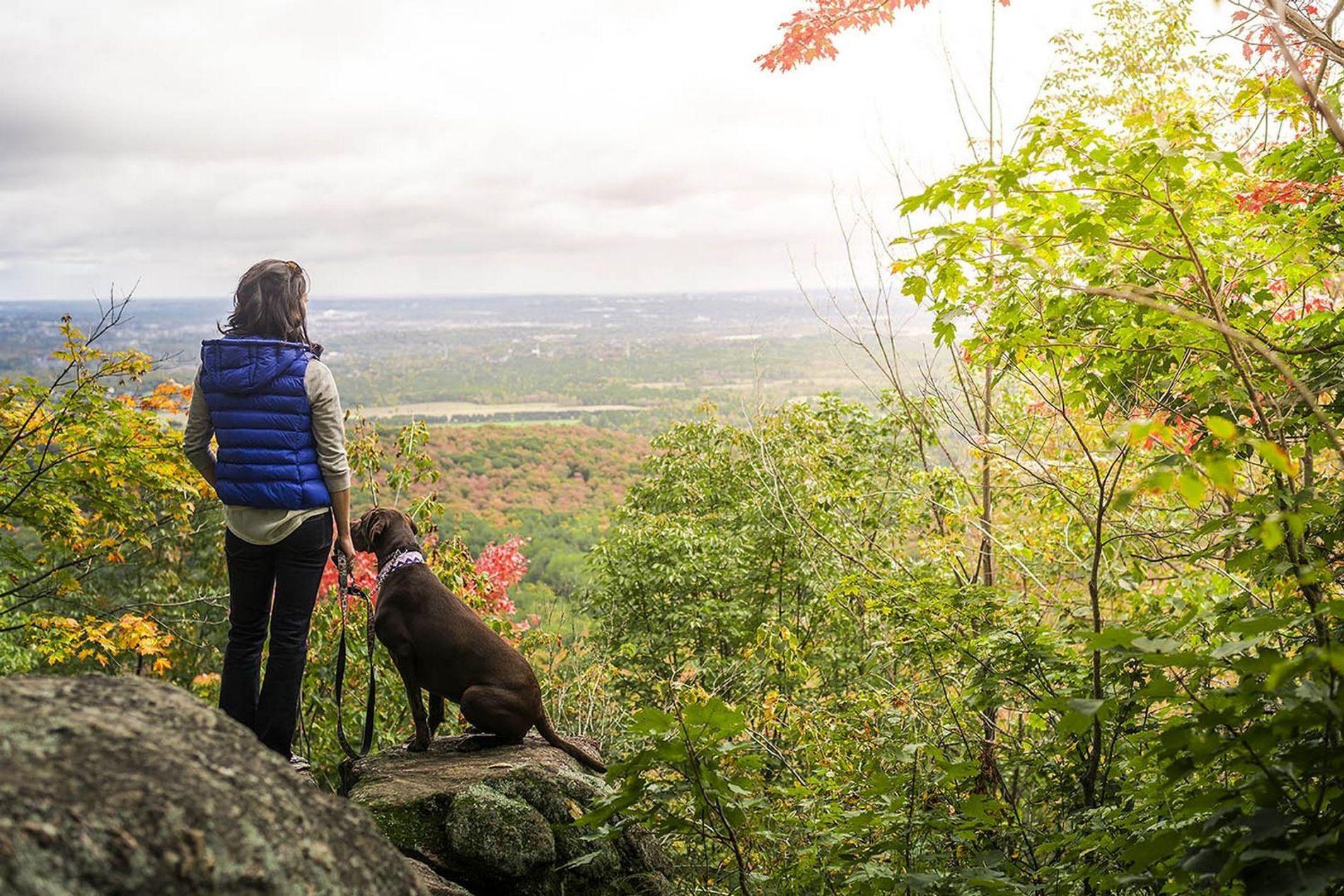 Der Gatineau Park ist nur 15 Minuten vom Parliament Hill in Ottawa entfernt und bietet eine ...