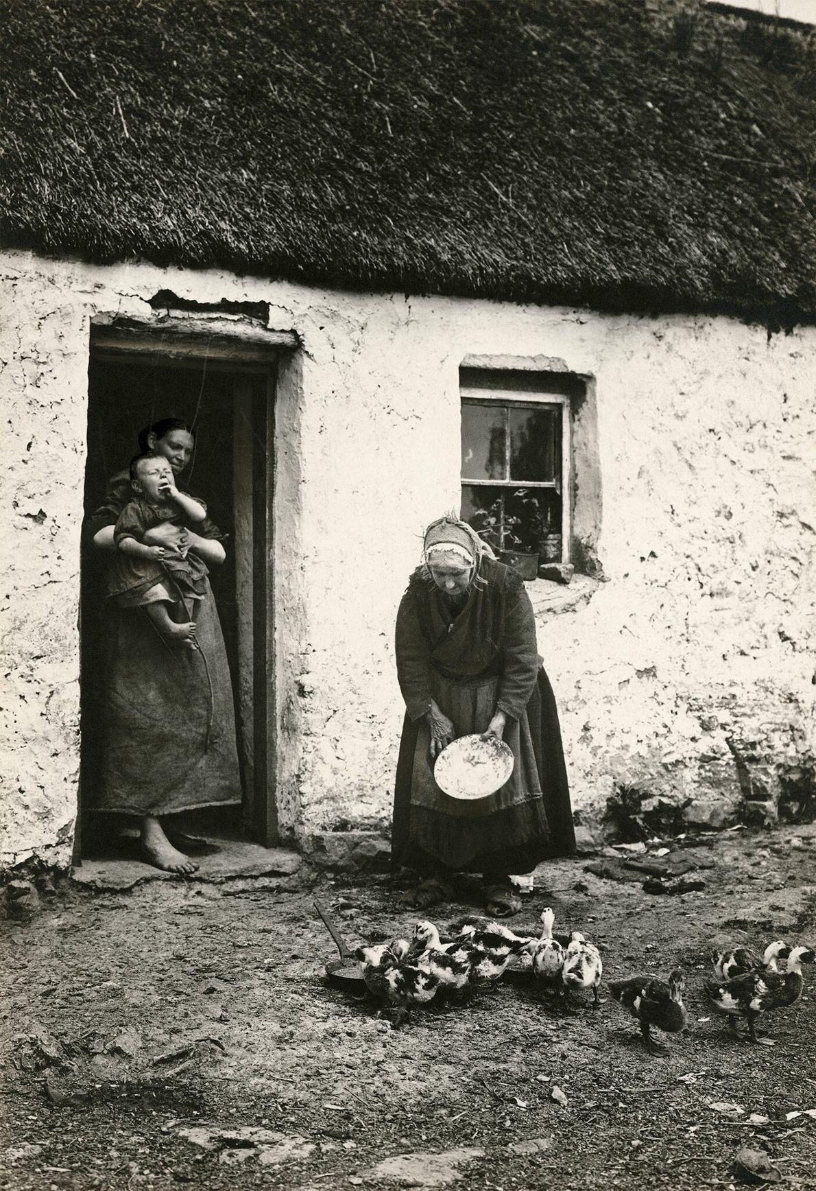 Eine Familie füttert den Entennachwuchs vor einem Haus in Galway, Irland.