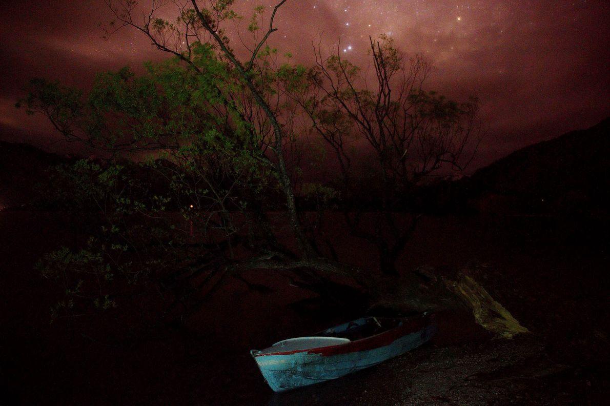 Ein kleines Boot und ein Baum ruhen unter dem sanften Licht des Nachthimmels in Wilson Bay, ...