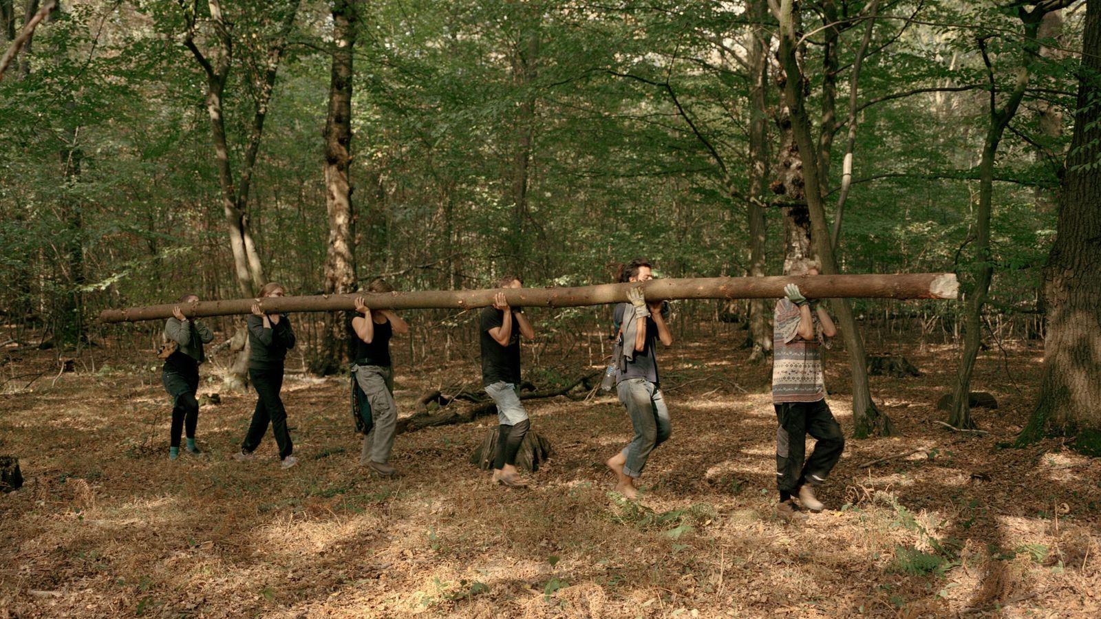 Aktivisten tragen einen Baumstamm durch den Wald, um damit ein Baumhaus zu bauen.