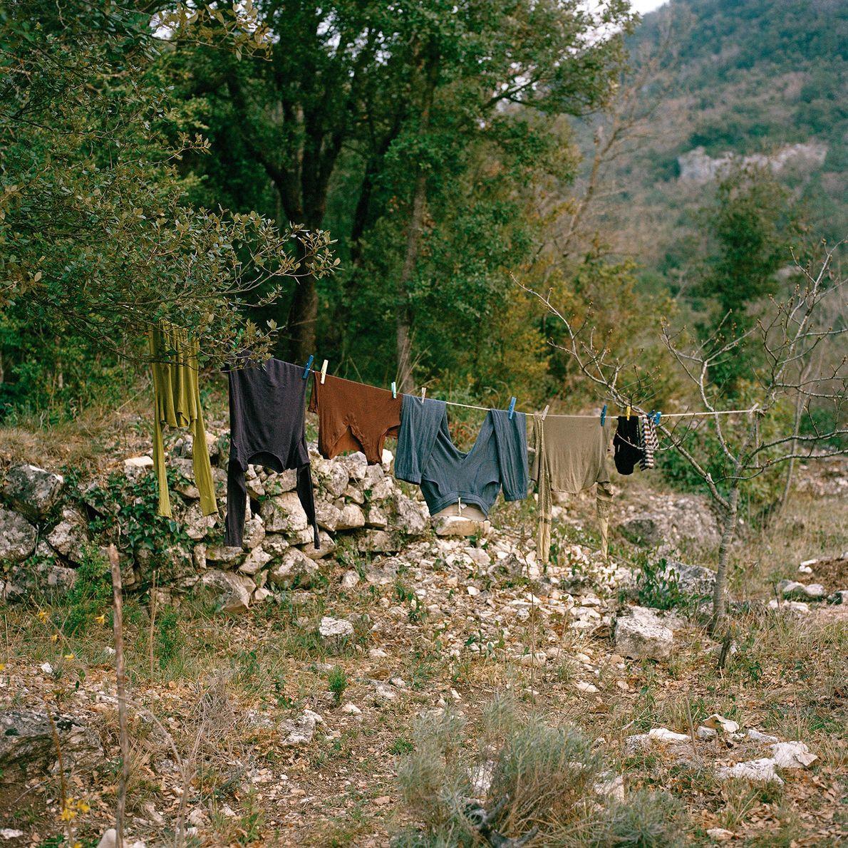 Wäsche auf Leine vor Wald