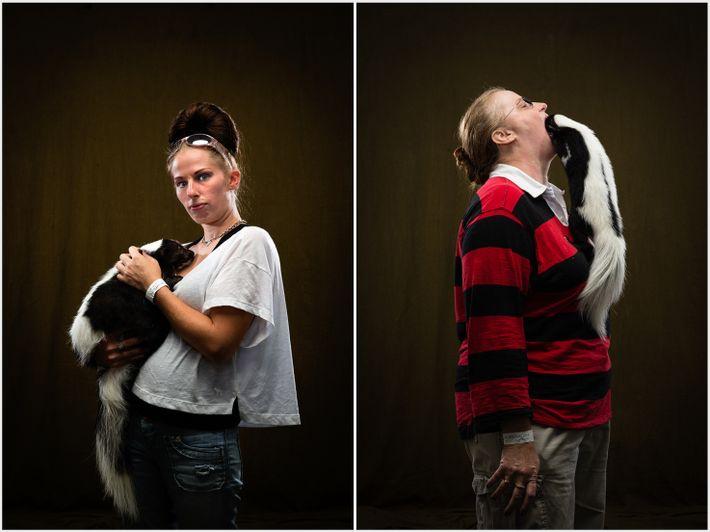 Skunks als Haustier