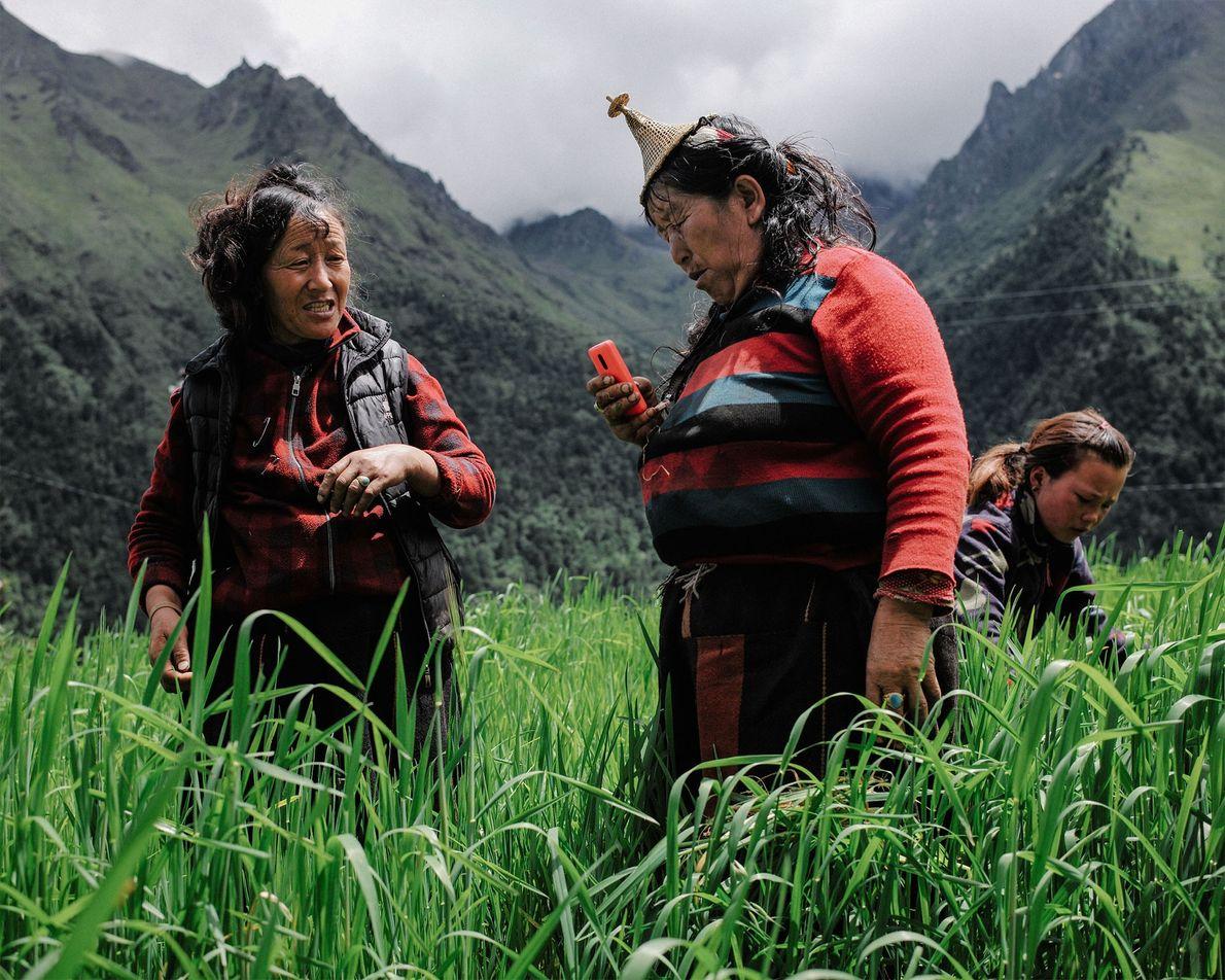 Zwei Bäuerinnen machen bei der Feldarbeit in Laya eine Pause, um einen Anruf zu tätigen. Laya ...