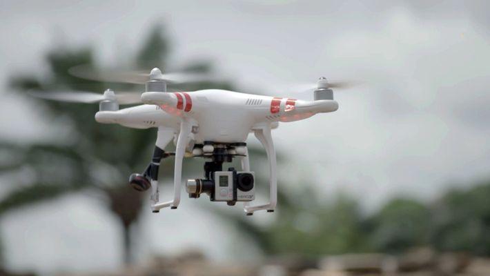 Drohneneinsatz gegen den Elfenbeinhandel