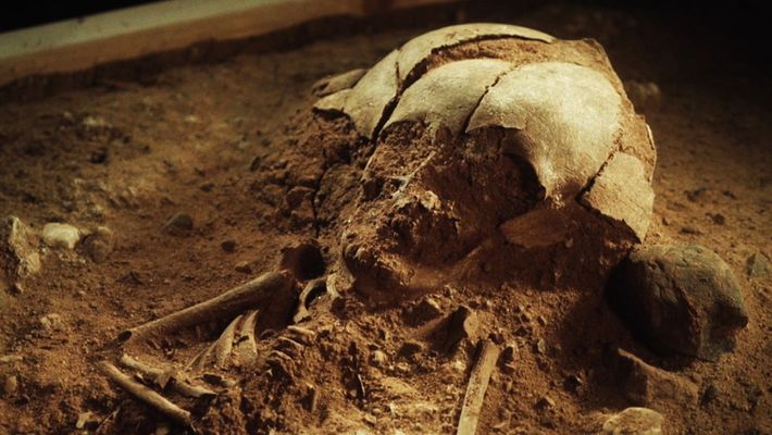 8.400 Jahre altes Babyskelett in Deutschland gefunden