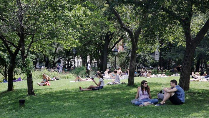 Die entspannte Ruhe im Central Park