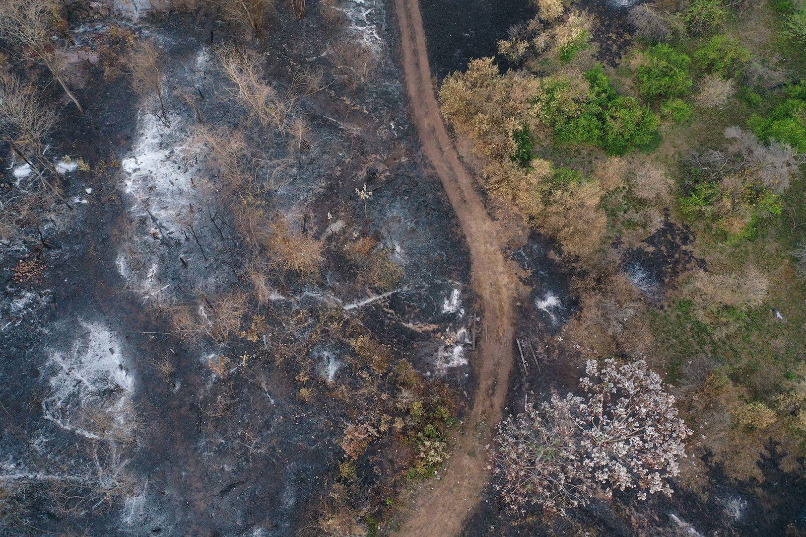 Luftaufnahme Roboré