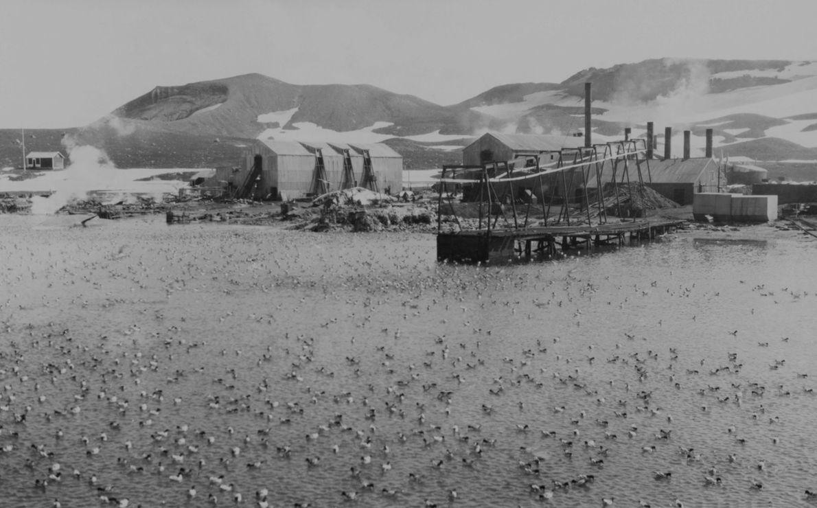 Hafen von Deception Island
