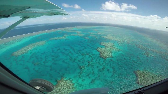 Das Great Barrier Reef könnte schneller sterben als gedacht