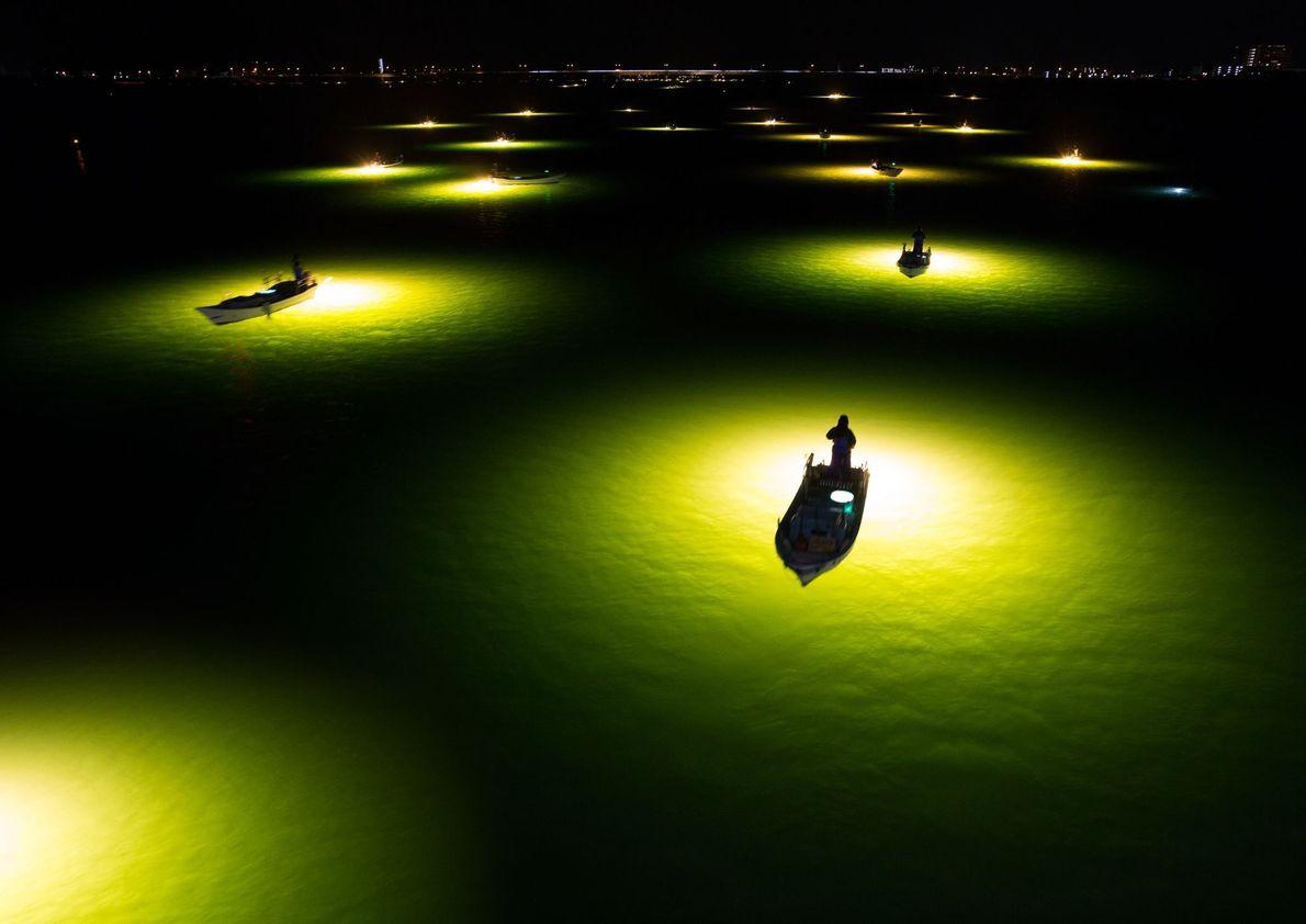 Bild vom Aalfischen in Japan