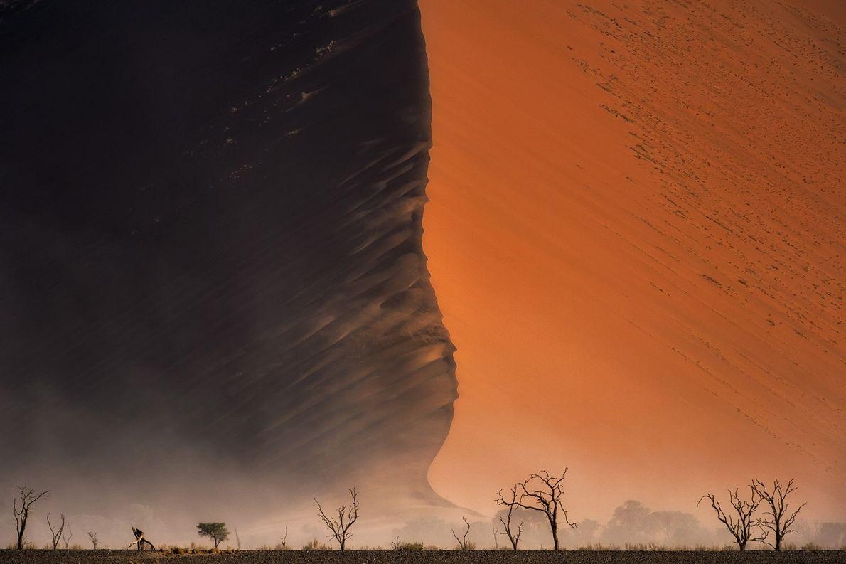 Eine große Düne in der Wüste Namib