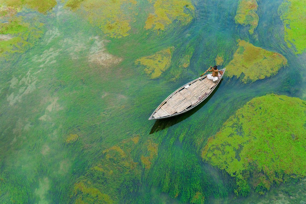 Ein Mann in Bangladesch paddelt durch Algen