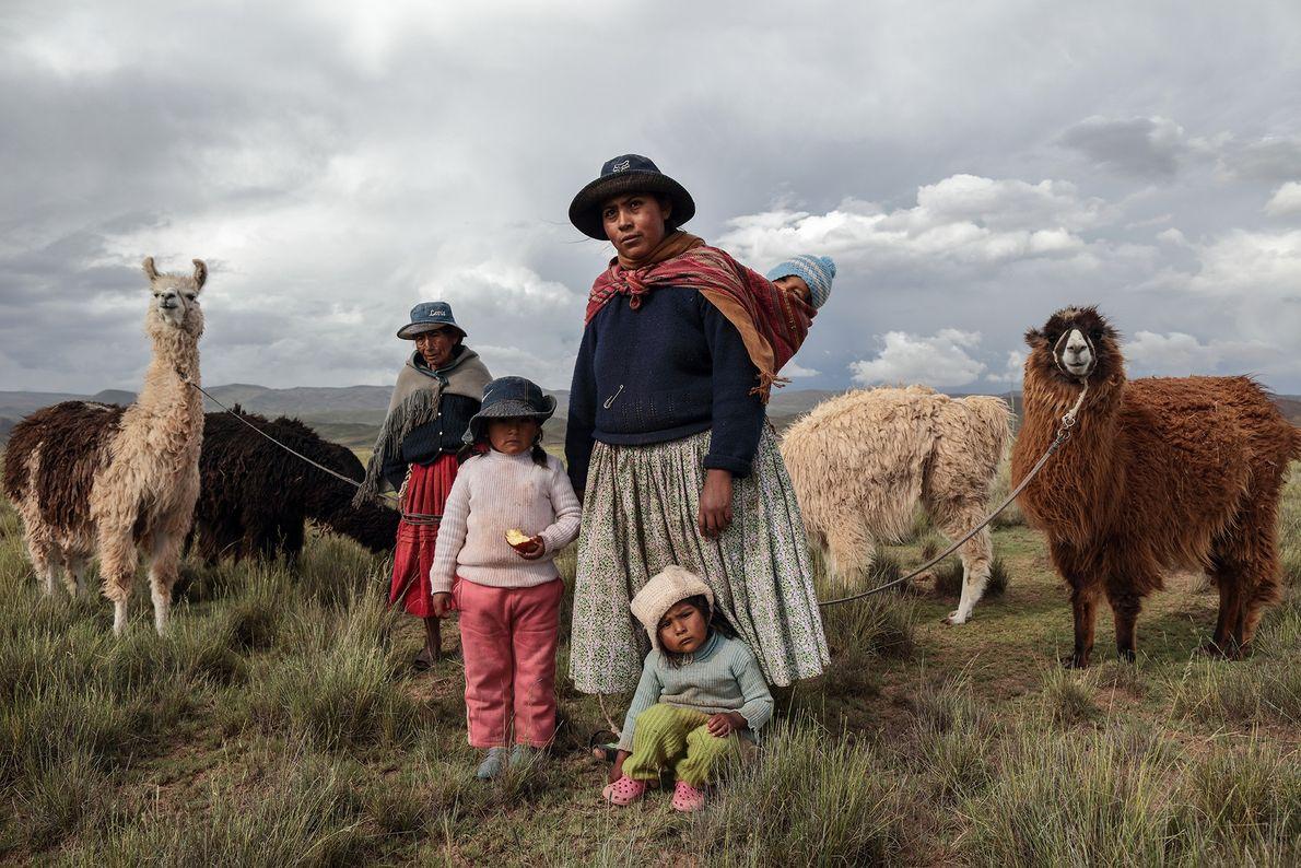 Eine Hirtenfamilie mit ihren Lamas