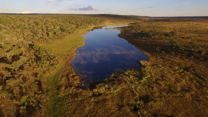 Unerforschte Seen in Afrika offenbaren versteckte Welten