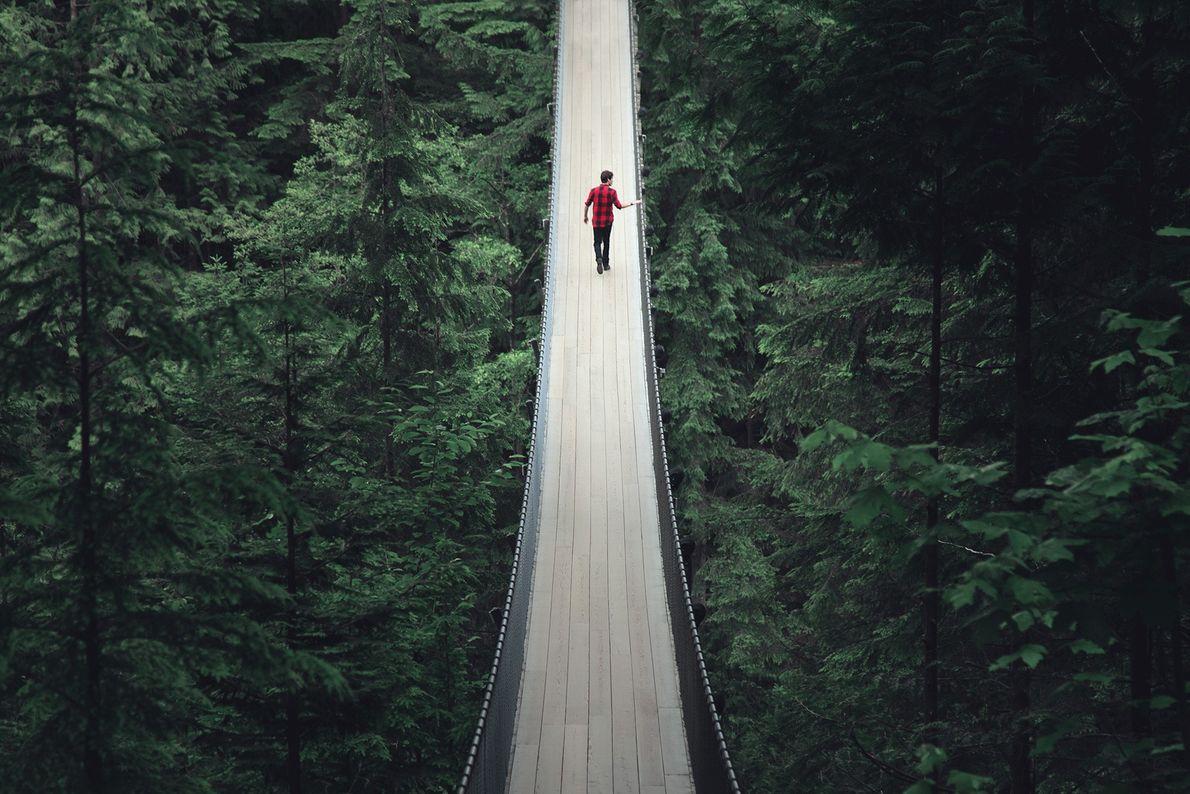 Ein Mann auf einer Hängebrücke in einem Wald