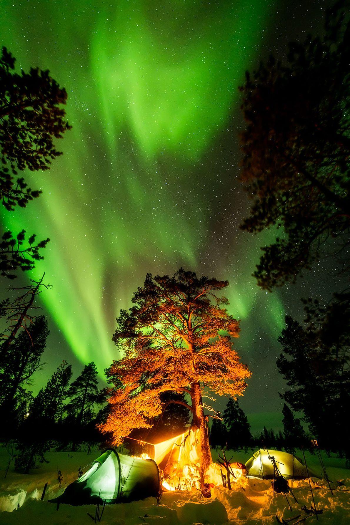 Grün erleuchteter Nachthimmel