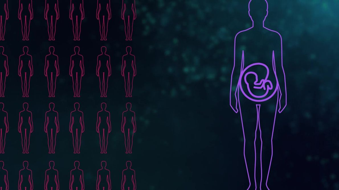 Die Geburtsstunde der Verhütungsmittel