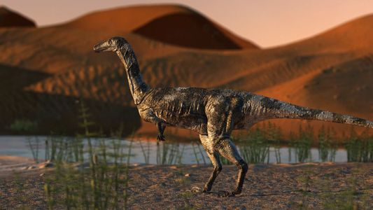 Dieser Dinosaurier balancierte nur auf zwei Zehen