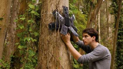 Alarmsystem für den Regenwald