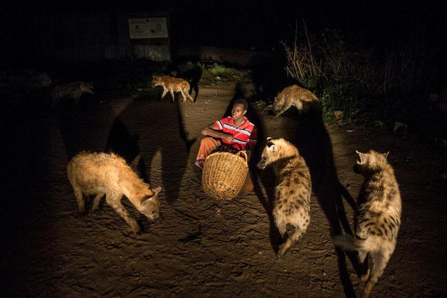 Abbas füttert die Hyänen vor seinem Haus in Harar, Äthiopien.