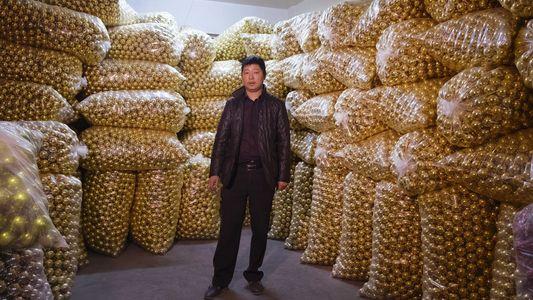 """Galerie: """"Made in China"""": Die Heimatstadt der Billigware"""