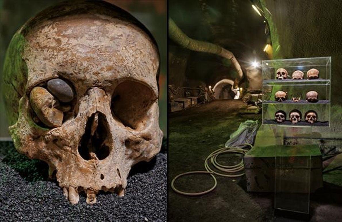 2. JAHRHUNDERT: Schädel aus der Römerzeit