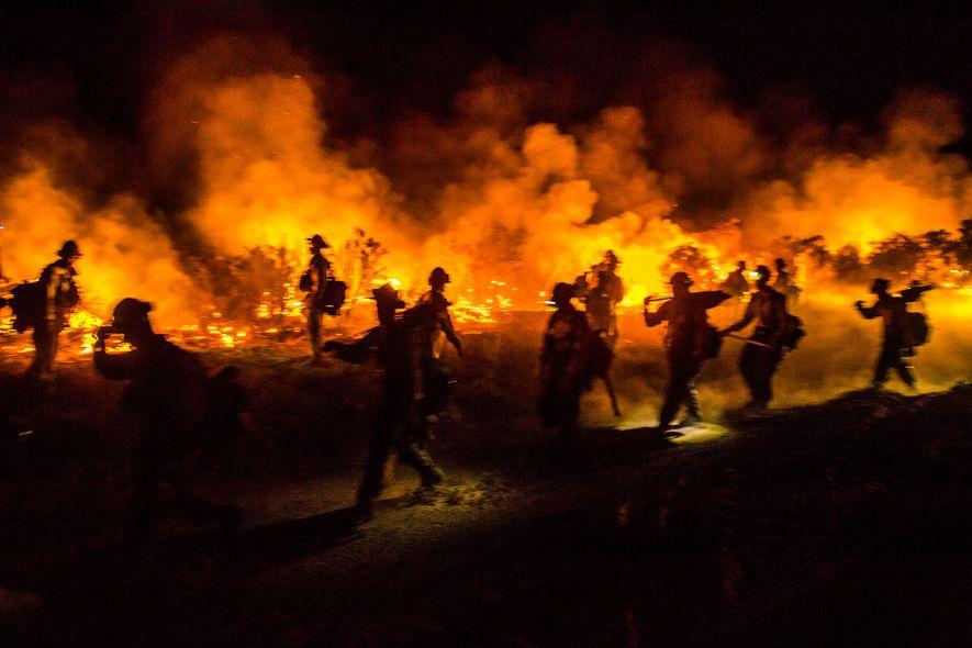 Feuerwehrmänner mit Kettensägen, Äxten und Pulaskis arbeiten an einer Löschaktion für das Border Fire in San ...