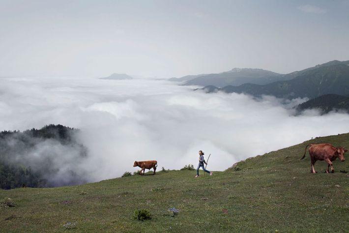 Foto eines Kindes und eines Kalbs am Rande eines von Nebel bedeckten Tals
