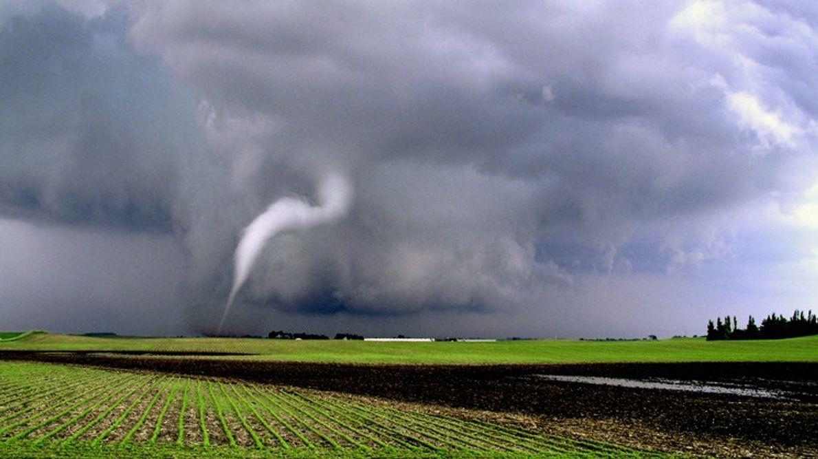Eine dünne Windhose entsteht über einem Feld im Nordwesten von Iowa.