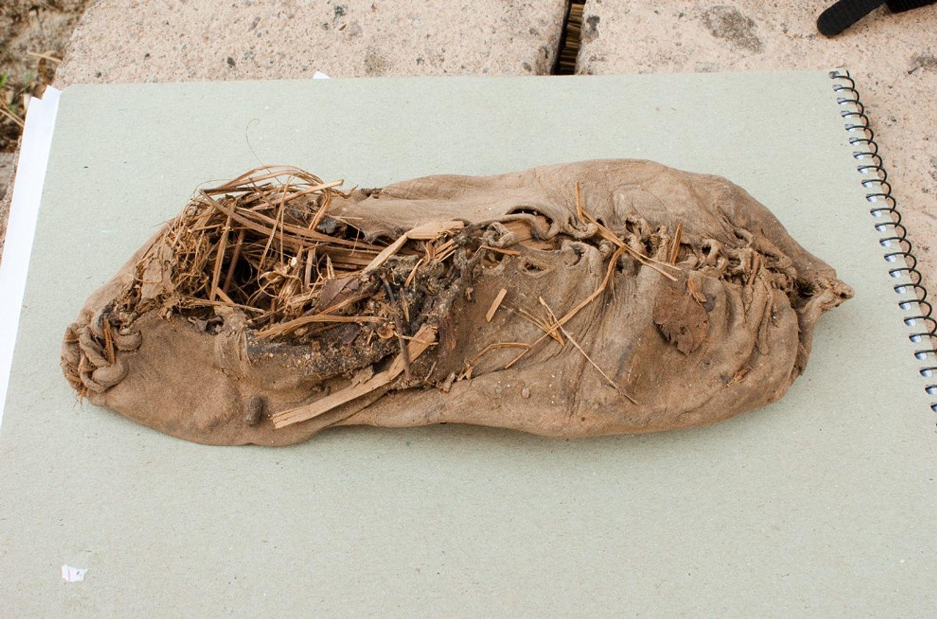 Der älteste Lederschuh der Welt