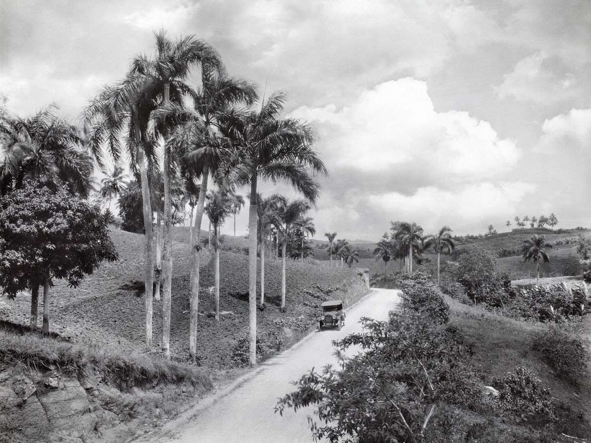 An automobile travels through expansive fields on one of Puerto Rico's main roads.