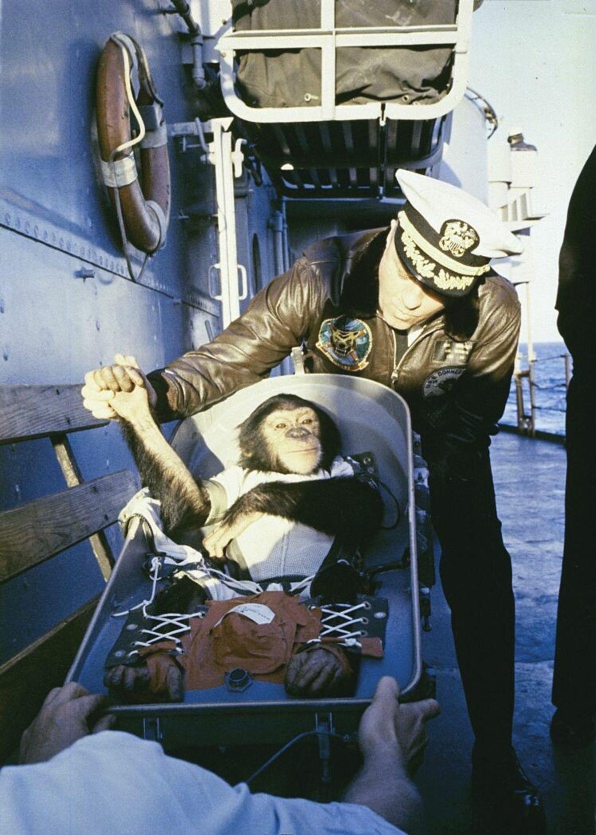 Ham grüßt den Kapitän der USS Donner nach seiner Wasserlandung. Dem dreijährigen Schimpansen wurde in Nachrichtenberichten ...